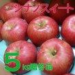 画像1: りんご シナノスイート 贈答品 5キロ箱サイズ 【送料込み】 (1)
