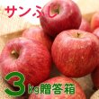 画像1: りんご サンふじ 贈答品 3キロ箱サイズ 【送料込み】 (1)