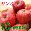 画像1: りんご サンふじ 贈答品10キロ箱サイズ 【送料込み】 (1)